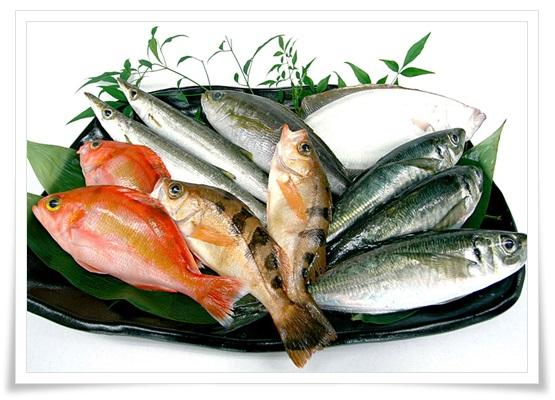 セブンイレブンの惣菜は魚商品が凄い!人気のおすすめ魚惣菜BEST7!1