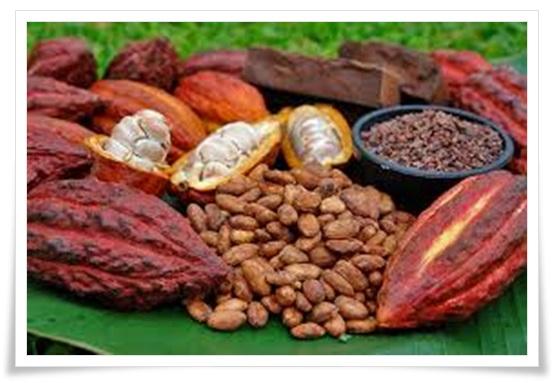 ファミマに濃厚チョコプリン!カカオの%ごとのカロリー&値段を比較3