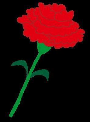 コンビニの母の日ギフト比較2017!おすすめのお菓子や花はどこ?2