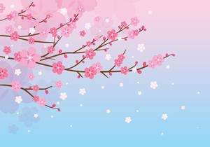 コンビニでお花見におすすめの商品は?桜スイーツ2019やお弁当も!2