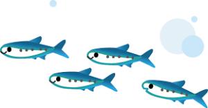 セブンの魚は本当に骨がない?骨なしで食べやすいランキングを紹介!