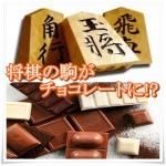 将棋の駒をチョコレートにした将棋デショコラ!値段やカロリーまとめ3