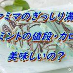 【ファミマのぎっしり満足チョコミントの値段・カロリー!美味しいの?】