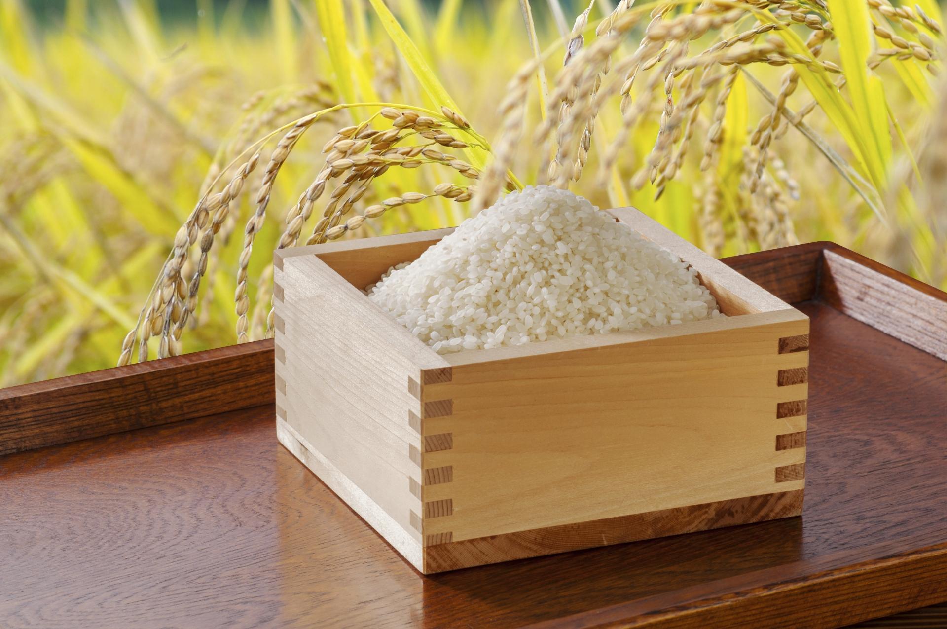 セブンのお米(PB商品)に2キロと5キロはある? 値段と他の種類も紹介! | セブンイレブン・マニアblog