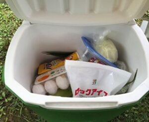 コンビニのロックアイス(ブロック氷)の使い道!保存方法も紹介!③